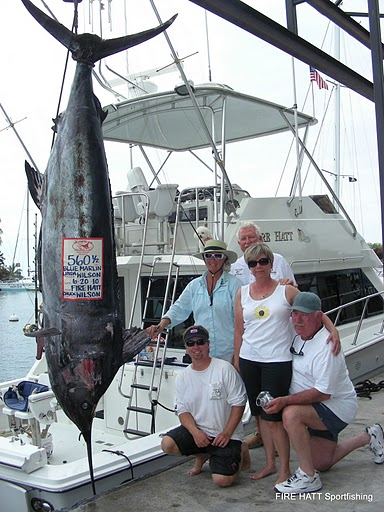 Largest Marlin for the 2010 Hawaii Rock N Reel Tournament