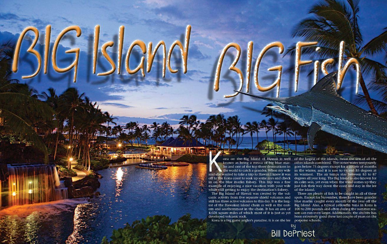 Blue marlin in hawaii kona fishing charter fire hatt for Fishing big island hawaii